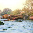 Mekong Delta — Stock Photo #31038337