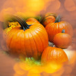 Pumpkins — Stock Photo #31146179