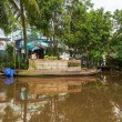 Mekong Delta — Stock Photo #31146239