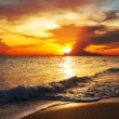 Sea sunset — Foto Stock