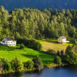 Norway landscapes — Stock Photo #32385269