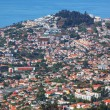 Madeira — Stock Photo #32385297