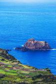 Madeira kusten — Stockfoto