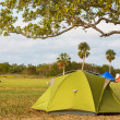 Stock Photo: Tent in camping