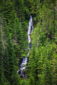 Beauty waterfall in forest — Stock Photo
