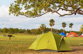 Tent in camping — Stock Photo