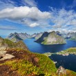 Lofoten — Stock Photo #33594589