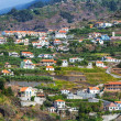 Madeira island — Stock Photo #33818241