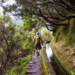 Stock Photo: Hike in Madeira