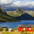 Huts in Norway — Stock Photo #34301059