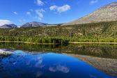 горы в норвегии — Стоковое фото