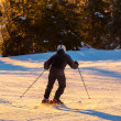 Skier — Stock Photo #34541457