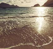 Lofoten sahilde — Stok fotoğraf