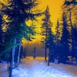 Stock Photo: Ski resort at night