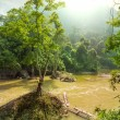 River in Vietnam — Stock Photo