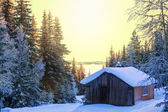 Winter hut — Stock Photo