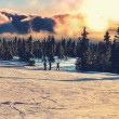 Ski resort — Stock Photo #36013017