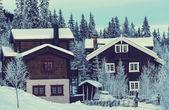 Winter village — Stock Photo