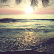 Tropical beach — Stock Photo #36073845
