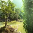 River in Vietnam — Stock Photo #36074003