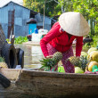 Mekong Delta — Stock Photo #36255351
