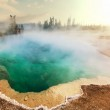 Yellowstone — Stock Photo #36361275