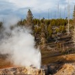 Yellowstone — Stock Photo #36561819