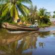 Mekong delta — Stock Photo