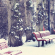 Stock Photo: Winter bench