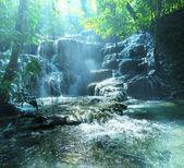 メキシコの滝 — ストック写真