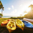 Canoe — Stock Photo #39624899