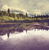 Lake on Alaska — Fotografia Stock