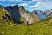 Hike in Lofoten — Stock Photo