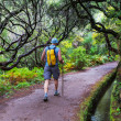 Stock Photo: Hike on Madeira