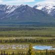 Mountains on Alaska — Stockfoto #40485559