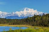 McKinley peak — Stock Photo