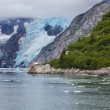 Iceberg on Alaska — Stockfoto #40535891