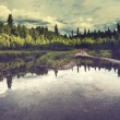 Lake on Alaska — Stock Photo #40614201