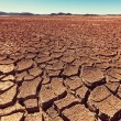 Drought land — Stock Photo #40614297