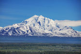 NP Alaska — Stock Photo