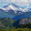 Mountains on Alaska — Stockfoto #40961757