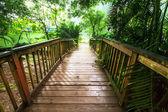 Boardwalk — Stock fotografie