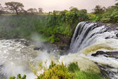 Cascata in messico — Foto Stock