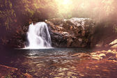 Waterfall on Sri Lanka — ストック写真