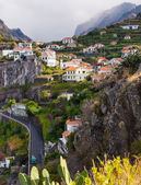 Madeira landscape — Stock Photo