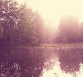 Nebbia nel lago — Foto Stock