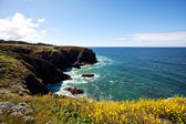 Ocean coast — Stockfoto