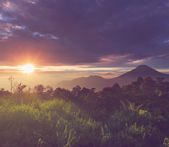 Paisagens java — Foto Stock
