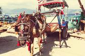 Gili transport — ストック写真