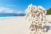 Spiaggia su gili — Foto Stock